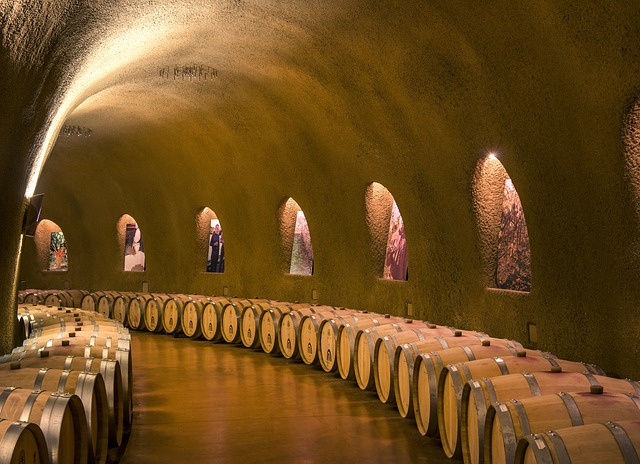wine-cellars-808175_640